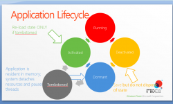 life cycle