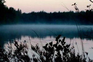 Weekend Watch: Nokia 808 PureView and Topolino70 – Misty Morning at a Lake