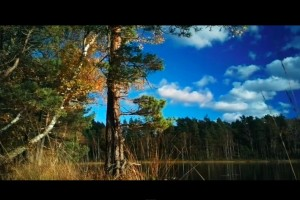 Video: Epic Nokia 808 PureView cinematic style with Christopher Westerholm