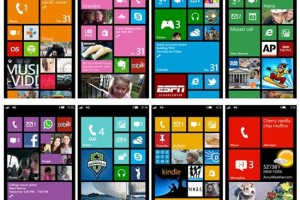 Director, Windows Phone Business Group, Vineet Durani Interviewed