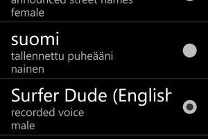 Nokia Drive Gem – Surfer Dude voice. Speaking of which….Bring back Own Voice