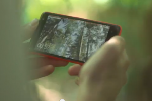 Video: Nokia Lumia 625 promo featuring 'Grass House'